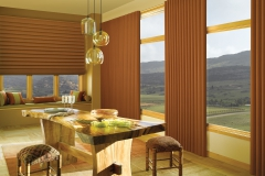 panel-drapes-blinds1